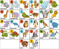 Vector color zoo alphabet with cute animals on white background. Stock Photography