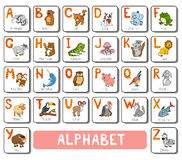 Vector color zoo alphabet. Square card with animals Stock Photo