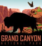 Vector Colorado river in Grand Canyon National Park with buffalo bison and bald eagle. Illustration stock illustration