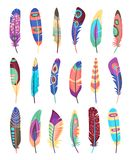 Vector colored feathers set Stock Photography