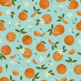 Vector colored seamless pattern of oranges isolated on blue pastel background stock illustration