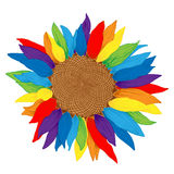 Vector colored sunflower. Stock Photo