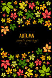 Vector colorful autumn leafs .Autumn background Stock Photography