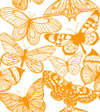 Vector colorful background with butterflies Stock Image