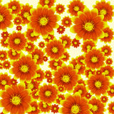 Vector colorful background with flowers Stock Image