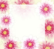 Vector colorful background with flowers. EPS10. Royalty Free Stock Photos