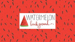 Vector colorful background with watermelon pulp royalty free illustration