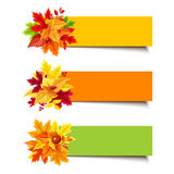Vector colorful banners with autumn leaves. Set of three vector orange, yellow and green banners with colorful autumn leaves Royalty Free Stock Images