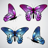 Vector colorful butterflies Stock Photos