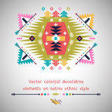 Vector colorful decorative element on native Stock Photography