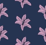 Vector Colorful Seamless Pattern with Drawn Lilies. Vector Colorful Decorative Seamless Background Pattern with Drawn Flowers, Lilies. Hand Drawn. Vector Royalty Free Stock Photography