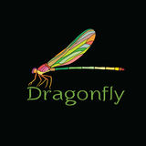 Vector of colorful dragonfly design Amphipterygidae. Stock Photos