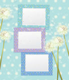 Vector colorful empty photo frames and dandelion f Royalty Free Stock Photo