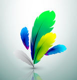 Vector colorful feather design Stock Photography