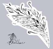 Vector colorful feathers -  leaves. Hand-drawn illustration. Stock Photo
