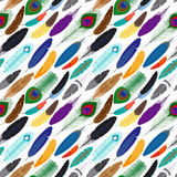 Vector colorful feathers seamless background. Colorful different feathers seamless background. Vector illustration Stock Images