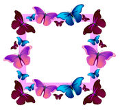 Vector colorful flying butterflies vector illustration