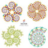 Vector colorful fractal ornament set Stock Photo