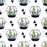 Vector colorful hand drawn seamless pattern with triangles, cactuses and succulents in terrariums Stock Image