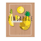 Vector colorful illustration of pineapple slices in flat design Stock Photos