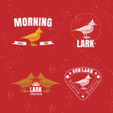 Vector colorful logo set with desert Crested lark bird Stock Photography