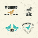 Vector colorful logo set with desert Crested lark bird Royalty Free Stock Photos