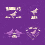 Vector colorful logo set with desert Crested lark bird Royalty Free Stock Photography