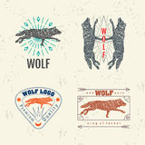 Vector colorful logo set with forest wolf Stock Photography