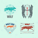 Vector colorful logo set with forest wolf Royalty Free Stock Image