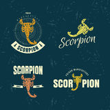 Vector colorful logo set with scorpion Stock Image