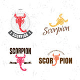 Vector colorful logo set with scorpion Royalty Free Stock Image