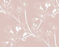 Vector Colorful Seamless Pattern with Drawn Flowers. Vector Pastel Colorful Decorative Seamless Background Pattern with Drawn Flowers, Cherry Blossom, Orchis Royalty Free Stock Photos