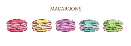 Vector colorful sketch macaroon almond cakes illustration Royalty Free Stock Image