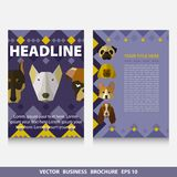 Vector colorful template flyer brochure with face of dogs and pl. Ace for your text and contact. Size A4. Eps 10 Royalty Free Stock Photos