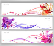 Vector colorido de la flor Fotografía de archivo