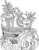 Vector Coloring book for adult. Thanksgiving day. Basket of apples. Coloring book for adult. Thanksgiving day. Basket of apples. Ornamental design for cards Royalty Free Stock Photo