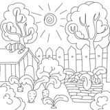 Vector coloring book carrots in the garden Royalty Free Stock Image