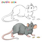 Vector Coloring book for children with rat. Stock Photography