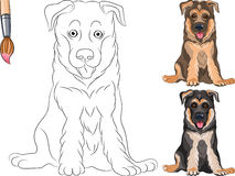 vector Coloring Book of Puppy Shepherd Stock Image