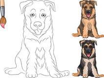 Vector Coloring Book of Puppy Shepherd Stock Image