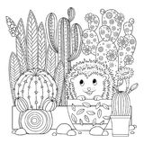 Vector coloring page. Linear image on white background cute cactus for page for coloring book. Contour image of cactus scribble fo. Linear image on white Royalty Free Stock Images