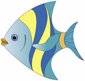 Vector colour fish. Beautiful cartoon colored fish on white background Royalty Free Stock Photos
