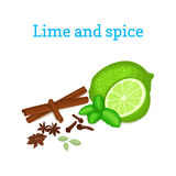 Vector composition of citrus lime fruit with spice. Tropical green lime fruit with fresh mint leaves anise cinnamon Royalty Free Stock Image