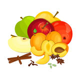 Vector composition few apples apricots with spice. Yellow, red and green apple  apricot fruits, anise cinnamon cloves Stock Image