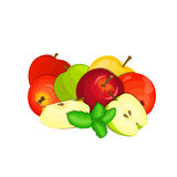 Vector composition of a few apples. Yellow, red and green apple fruits and mint leaves. Group of tasty fruits colorful Stock Image