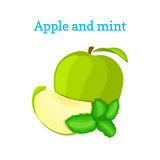 Vector composition of a few green apples and mint leaves. Fresh apple fruits appetizing looking. Group of tasty ripe Stock Photography