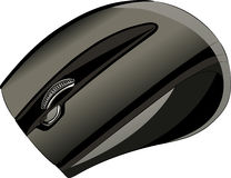Vector computer mouse Stock Image