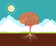 Vector concept illustration with brain Royalty Free Stock Image