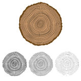 Vector conceptual background with tree-rings. Stock Image
