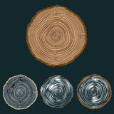 Vector conceptual background with tree-rings royalty free illustration